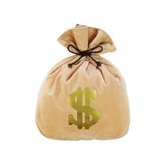 Money Bag Cushion