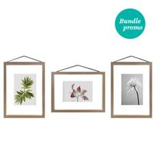 Bundle 4: Minimalist Plant Framed Bundle